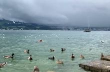 阿尔卑斯山上的,苏黎世湖,纯净的美丽