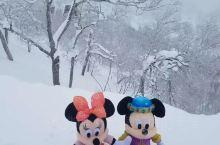 北海道星野度假区 北海道星野一定要去!白茫茫的大雪,坐着缆车登山山顶,一切都觉得美美的!雪很厚,很美