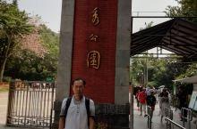 越秀,博物馆,北京路,陈家祠,石室圣心大教堂,云台花园,中山纪念馆,西汉南越王博物馆