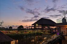 乌布斯塔拉酒店:万豪酒店旗下的森林系酒店,酒店里面自带两个游泳池,其中一个是无边泳池的650左右一晚