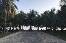 椰树沙滩,渔女夕阳,很棒的旅游休假地。国庆后的淡季,人很少,是个漫步发呆的好地方。旁边有很多海鲜餐厅