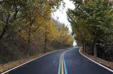 秋天的彩虹公路是五彩斑斓的,每一段都有属于自已的色号,适合自驾网红溧阳1号路北段。下次打卡南段……