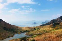 江湖再见!最美海岛和鱼鸟作伴。 有时候旅行就是一场奇遇,你不知道下一个站点等待你的是什么。碰到一个人