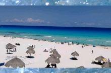 到坎昆必做的四件事 | 够浪够爽的独自旅行   坎昆的海,层次分明,颜色透亮。  来到海豚海滩小小