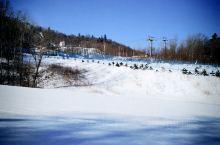 亚布力滑雪体验不错!滑道不错,教 亚布力新体委滑雪场  练将我家宝贝保护的很好,没摔一跤,倒是和他爸