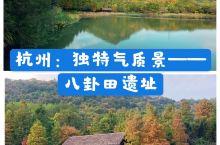 《深度杭州:西湖边的独特景——八卦田遗址》 我总觉得, 八卦田遗址公园的气质 和西湖边的景致不大一样
