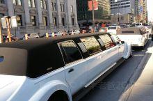 在蒙特利尔世界玛丽大教堂,一场华丽的法裔年青人婚礼正在隆重举行,婚车豪华,童男童女引路,教堂庄重,神