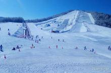"""神农架国际滑雪场海拔2580米,同时可接待5000人滑雪。集滑雪观光于一体的大型滑雪场。是国家应""""北"""