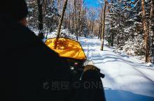 老白山 神鹿山   老白山原始生态景区   老白山地处吉林省敦化市黄泥河自然保护区,西北与黑龙江五常