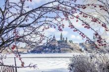 每年到了冬季,渥太华就会彻底变成一个冰雪世界。每年的1月左右,有着将近200年历史的,世界非物质文化