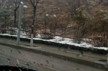 沿省道一路看雪,枣庄的第一场雪虽然有点晚但是很美