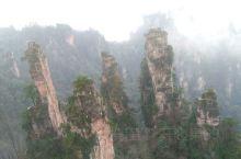 国家森林公园景区很大,奇峰异石是一座座又一片片耸立,多姿多彩,空气清新,山下和山上完全是不同的景色,