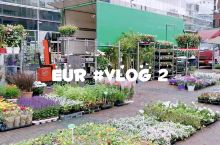 刚到欧洲行程就被取消 欧洲之旅 vlog2  到鹿特丹的第一天竟然下雨了?!  原本计划的小孩堤坝风