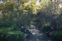 暖暖的阳光、休闲的人们,享受着它的美景……