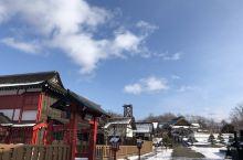 北海道的雪 纯的让人心悸 犹如黑夜里的满天繁星 抬头就能看见。这个冬天 让我们来一场说走就走的旅行