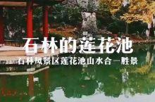 云南昆明石林风景区里莲花池的山水胜境。