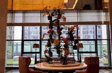 迟来的扬州之行,入住扬州希尔顿逸林酒店,去年国庆期间新开业的酒店。交通很方便,我们是自驾前往,停车也