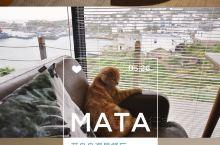 #来花鸟岛MATA餐厅,找寻生活的乐趣#