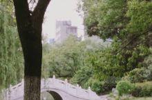 我在环碧公园