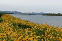 乳山潮汐湖
