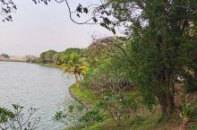 每天在河边走走逛逛,雅加达机场旁边有个湖,湖边有个酒店,以前是老的喜来登酒店,虽然历史比较久,但是还