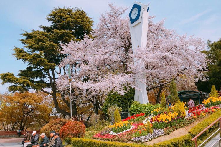 Jayu Park1