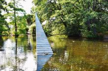 【南半球的盛夏 | 重返新西兰南岛·基督城植物园】  距离上次来新西兰南岛已经过去了一年半的时间。那