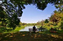 美丽的公园