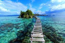 """美娜多,它曾被誉为""""世界第一潜水圣地"""",就连赫赫有名的马尔代夫和大堡礁都排在它后面。说起这个地方,或"""