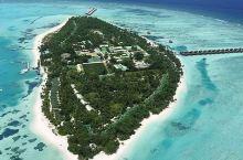 马尔代夫蜜月岛,带你度过甜蜜的一天  马尔代夫岛屿众多,但最后我还是选择了蜜月岛,其实原因非常简单,
