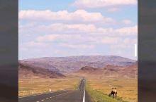 """奇遇新疆漫游记"""" 这将是一场奇遇新疆的漫游记。亲子旅行,孩子是第一位的。孩子想去看的,纯净的、辽阔的"""