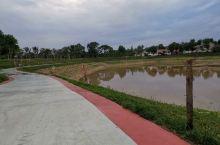 岐山县凤鸣湖边上的小村庄,干净恬静,让人特别舒服