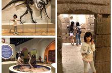 旅途中游玩的皇家博物馆印象深刻,受益匪浅。         皇家安大略博物馆(Royal Ontar