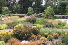 美国华盛顿州的Bellevue Botanical Garden。很不错的公益性园林。值得一去!