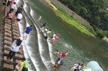 夏天了就该去溪边玩耍一下