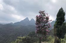 武当山,山下是雨天,山上是晴空,因为云海。