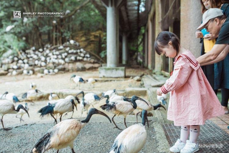 오키나와 네오파크동물원2