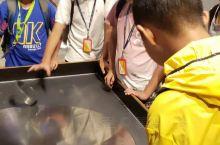 在巴布亚公园的科学博物馆里,各种有趣的实验让同学们流连忘返。