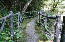 如果从武夷三姑出发,那就先黄岗,再龙归。龙归路线不长,半小时也就全覆盖了。但却也是个值得细细品味的地