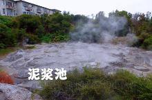 泥浆池位于毛利文化村入口处,也是游客最集中的地方,好在景区分布还挺广,空气中弥漫着硫磺的臭鸡蛋味,越