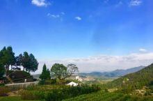 磐安乌石村游玩,山水之间来呼吸 宁静悠闲的空气吧,慢享美丽乡村