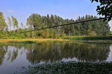 钓钓鱼,欣赏欣赏风景,就是蚊子多