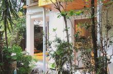 深圳探店 你来小院:藏在深巷处独栋森林茶馆 这是一家在kkmall后面南村里的独栋小茶馆,开在新手咖