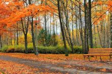 夏天的遗憾一定会被秋风的温柔化解.