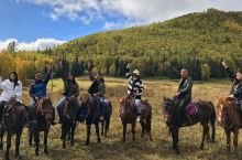 【让我们红尘作伴活得潇潇洒洒】禾木必体验的马队骑行,在马背上看风景,激情与美景同行,往返大美丽峰,3
