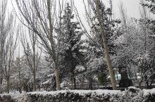 下雪了,是的很漂亮