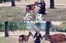奈良游玩攻略   让你小鹿乱撞的古都~  日本关西有一个叫作奈良的地方,古称平城京,仿大唐长安城而建