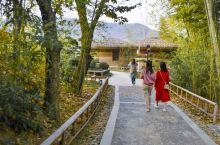 如果有机会到西九华山,是一定要到白鹭湖民宿住上一阵子的。这个民宿,就位于白鹭湖南岸湖边的一片郁郁葱葱