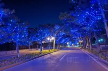 傍晚散步 随拍 街边夜景
