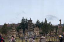 塔林 少林寺有武术表演 永泰寺 素斋,挺好吃的,有道佛跳墙胡建人觉得不像,不过挺好吃hhhh